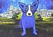 blue-dawg