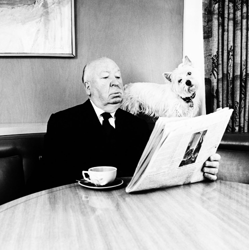 Alfred-Hitchcock-Dog-Reading-Newspaper