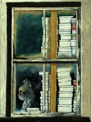 cat books window