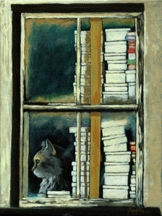 cat books window