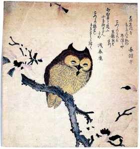 Art-Asian-Animal-bird-owl-Japanese-woodcut