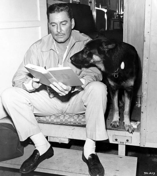 Errol-Flynn-book-dog