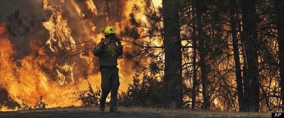 Firefighter A.J. Tevis watches the flames of the Rim Fire near Yosemite National Park, Calif., on Sunday, Aug. 25, 2013. With winds gusting to 50 mph on Sierra mountain ridges and flames jumping from treetop to treetop, hundreds of firefighters have been deployed to protect this and other communities in the path of the Rim Fire raging north of Yosemite National Park. (AP Photo/Jae C. Hong)