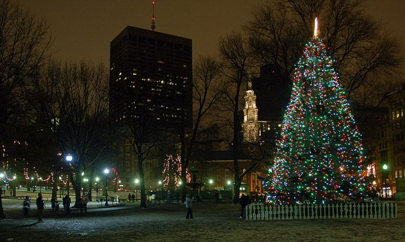 Christmas tree on Boston Common, 2013