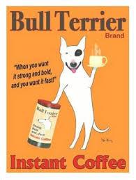 bull terrier instant coffee