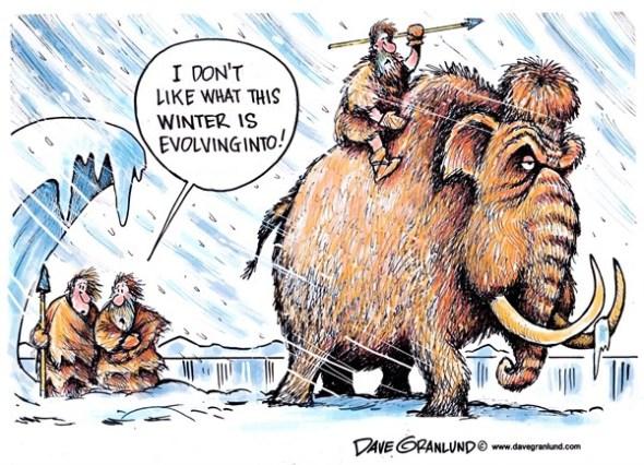 winterevolving