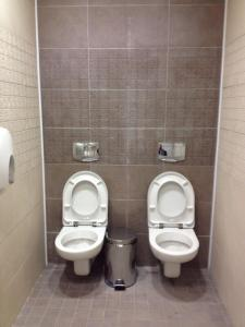 Men's toilets in Sochi