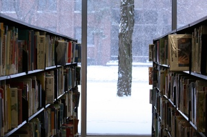 winter2013bookshelves