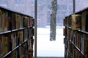 winter2013bookshelves