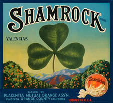 ShamrockOranges