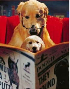 dog reading to puppy