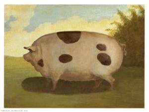 brown-pig