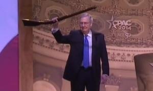 Mitch McConnell gun
