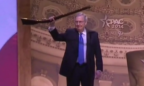 Image result for Images of Mitch McConnell with gun at NRA
