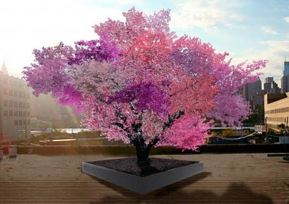 o-TREE-900