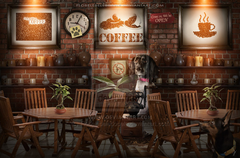 Coffee Shop Coffee Shop Background Posted
