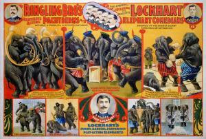 1-circus-poster-1899-granger