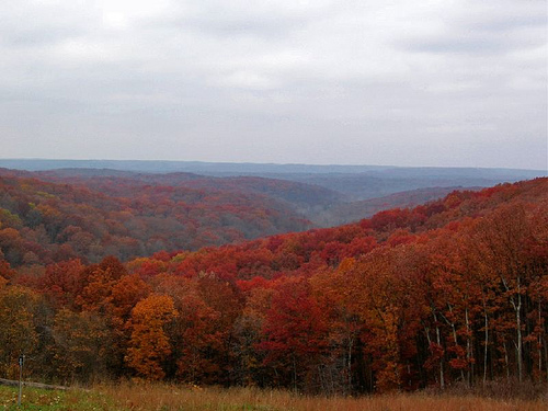 Indiana's Brown County State Park in Fall.