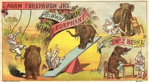 forepaugh-clown-elephant