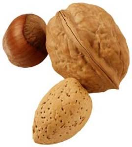 walnut-300