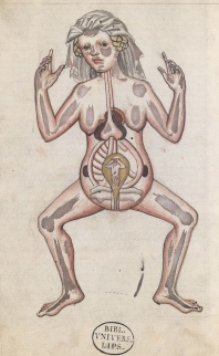 Even in the fucking middle ages, they knew more about a woman's reproductive system then the asshole GOP of today!