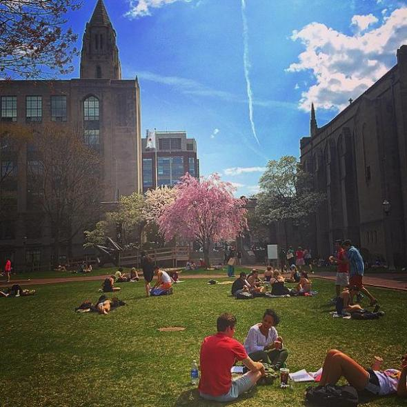 "Students study for finals on ""BU Beach,"" May 6, 2015"