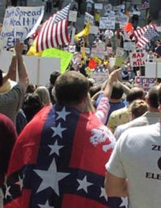 tea-party-confederate-flag