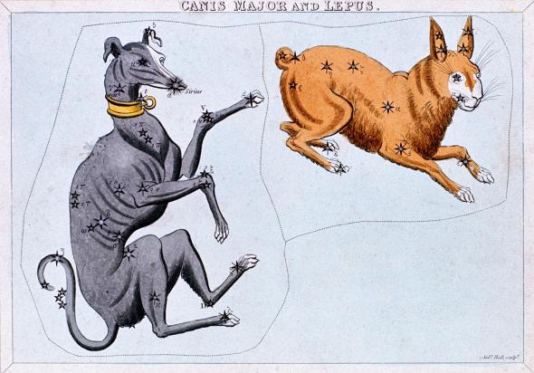 "The ancient Greeks thought of the constellation Canis Major as a dog chasing Lepus, the hare. The star Sirius is the dog's nose; the Greeks called it the ""dog star.""  (National Geographic)"
