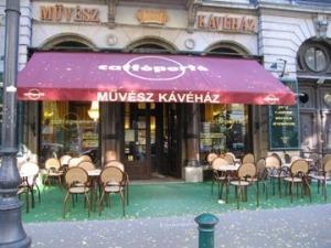 muvesz_coffee_house