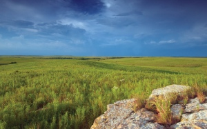 central-great-plains-grassla-1