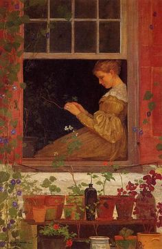 Morning glories, by Winslow Homer