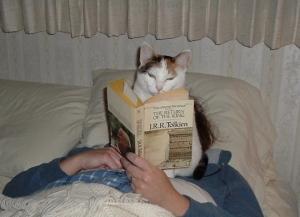 cat050513