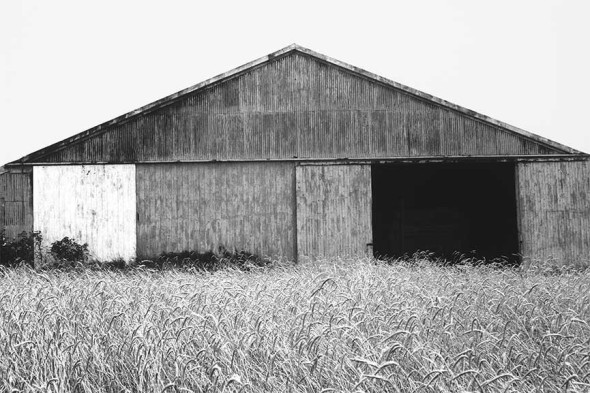 Barn in Southhampton, by Ellsworth Kelly
