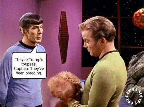 Trump toupees
