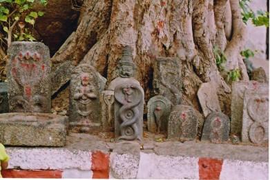 Vijayanagar_snakestone