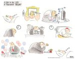 A day in the life of President Trump, Ann Telnaes
