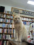 Adams Avenue Book Store in San Diego, CABartleby
