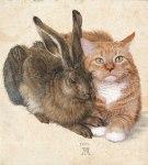 albrech durer hare andcat