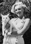 Marilyn-monroe-with-a-cat-720×1024