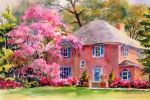 Carol Bouville, Pinkhouse