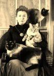 vintage cats3