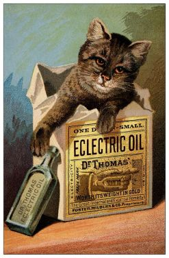 Dr. Thomas' Eclectric Oil was formulated by Dr. S. N. Thomas in the late 1840s. It contained spirits of turpentine, camphor, oil of tar, red thyme, and fish oil