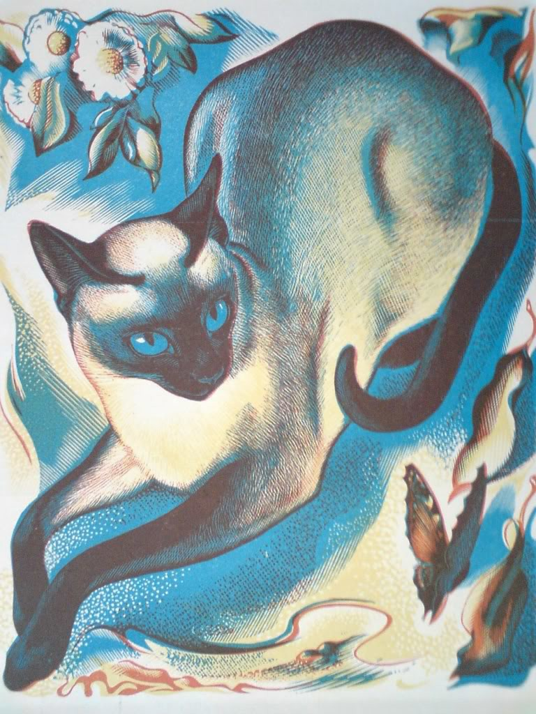 Agnes Miller Parker, Siamise cat, 1950