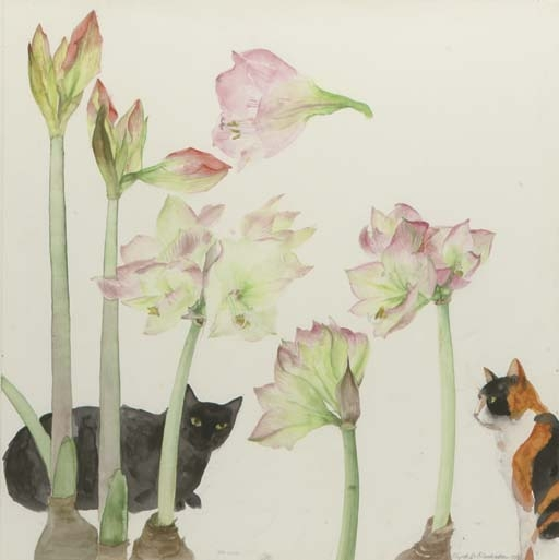 Amaryllis and Cats, Elizabeth Blackadder