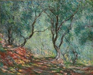 Claude Monet - (1840 - 1926) Ulivi nel giardino Moreno 1884