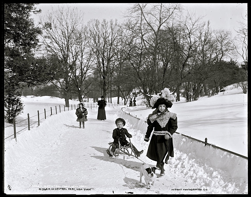 In Central Park, New York, ca. 1900, by Byron, Detroit Publishing Co., via Library of Congress Prints and Photographs Division.