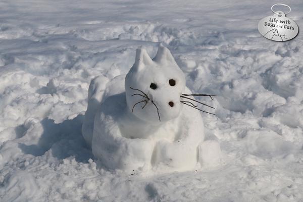 Snow-cat-logo-72