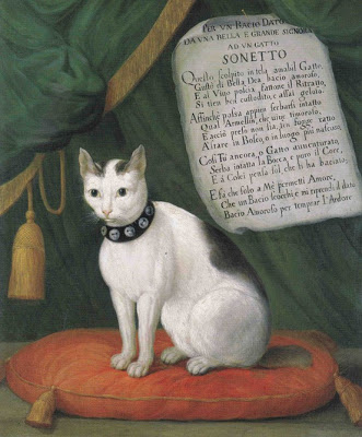 Portrait of the Cat Armellino With a Sonnet by Bertazzi , Giovanni Reder, 1750