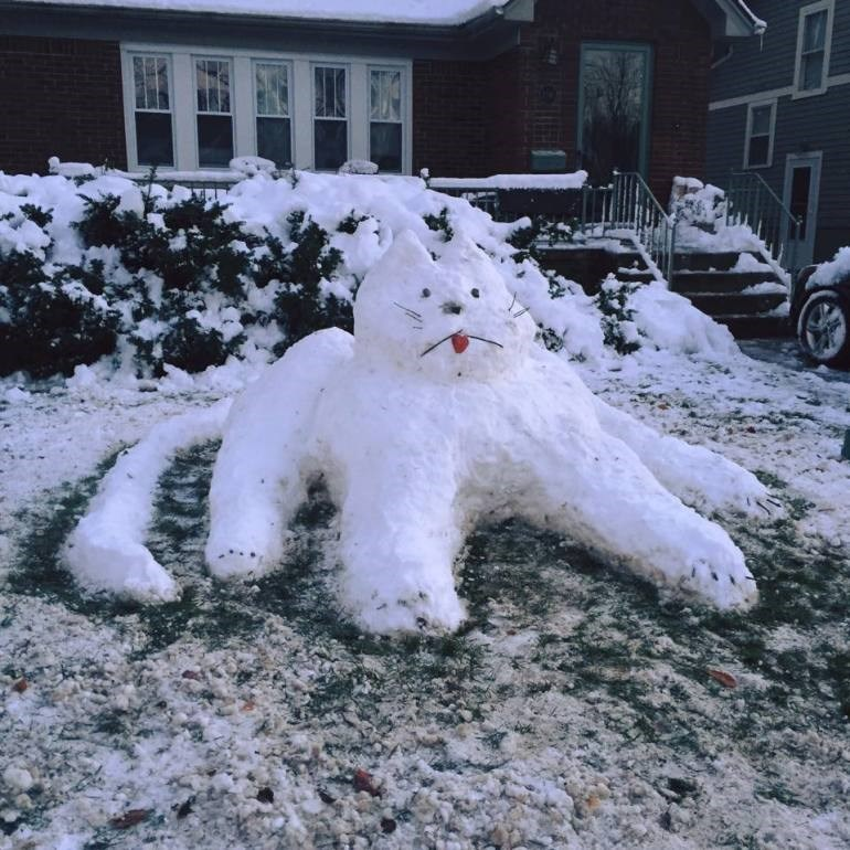 photo-of-snow-cat