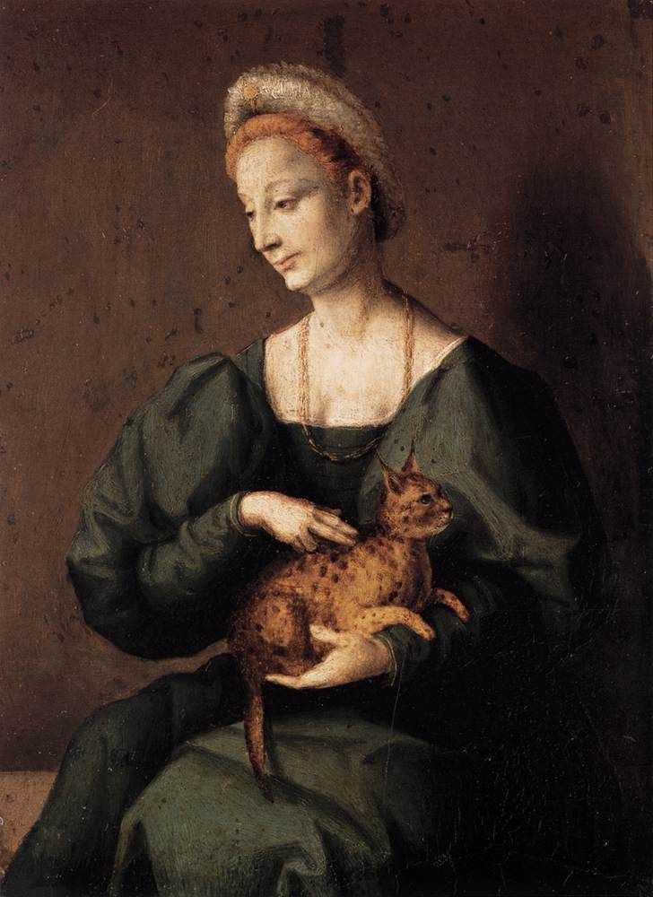 Woman with a cat, Il Bacchiacca